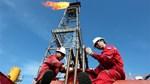 Giá dầu gần mức cao 8 tuần do tồn kho của Mỹ giảm