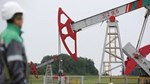 TT dầu TG ngày 19/1: Giá giảm do sản lượng của Mỹ phục hồi trở lại