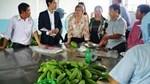 Việt Nam và New Zealand tăng cường hợp tác an toàn thực phẩm
