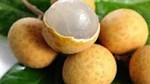 Sản lượng nhãn sụt giảm do thời tiết bất thuận