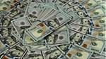 TT ngoại tệ ngày 21/11: tỷ giá trung tâm và đồng USD quốc tế đều tăng