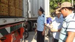 Xuất khẩu nông sản lao dốc, nhập khẩu ô tô tăng tốc