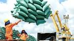 Bộ Công Thương thông tin về tình hình xuất khẩu gạo