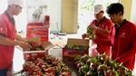 Thị trường Austalia đón nhận thanh long ruột đỏ của Việt Nam