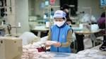 Bộ Công Thương khuyến cáo về việc đảm bảo chất lượng khẩu trang xuất khẩu