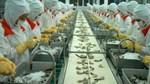 Xuất khẩu chạy nước rút về đích: Kỳ vọng thị trường EU