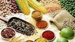 Tiềm năng xuất khẩu hàng nông sản chế biến của Việt Nam sang Australia