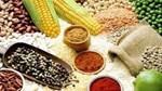Nguyên nhân nào đang đẩy giá thực phẩm toàn cầu tăng cao?