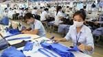 Ngành dệt may vực dậy trong đại dịch nhờ động lực từ các FTA