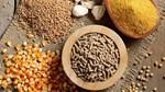 Giá ngũ cốc ngày 3/8: Đậu nành, ngô giảm khoảng 1% do lo ngại nhu cầu giảm
