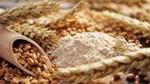 Giá đậu tương giảm thấp do triển vọng thời tiết hạn chế tổn thất