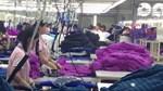 Doanh nghiệp Mỹ đổ vốn vào dệt may Việt Nam