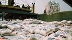 Tháng 1, sản lượng xuất khẩu gạo tăng khoảng 46%