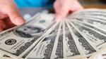 Tỷ giá tăng và chuyện những khoản vay bảo hiểm tỷ giá