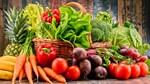 Ngày 29/9/2020: Hội nghị giao thương trực tuyến rau, củ, quả Việt Nam – Hà Lan