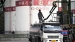 Brazil vượt Iraq trở thành nhà cung cấp dầu thô lớn thứ ba cho Trung Quốc