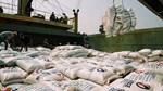 Vì sao xuất khẩu gạo giảm sâu cả lượng và trị giá?