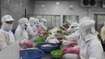 TPHCM dẫn đầu cả nước về xuất khẩu thủy sản