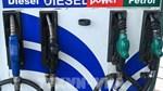 Doanh số bán nhiên liệu của Ấn Độ đang tăng trở lại