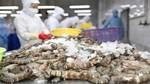 Yếu tố then chốt để ngành thủy sản đáp ứng quy tắc xuất xứ tại EVFTA