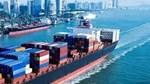 Xuất khẩu sang Đài Loan 8 tháng đầu năm 2021 đạt trên 2,96 tỷ USD