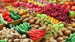 26/2 – 2/3/2017: Triển lãm nông nghiệp quốc tế SIMA PARIS 2017