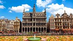 Xuất khẩu sang Bỉ tăng trưởng ở hầu hết các nhóm hàng