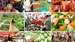 Việt Nam sẽ xuất khẩu một loạt mặt hàng nông, thủy sản sang Mông Cổ
