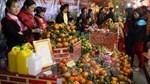 19-25/12: Hội chợ nông đặc sản vùng miền, quà tặng Noel