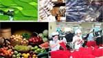 Sơ bộ xuất khẩu hàng hóa của Việt Nam năm 2017