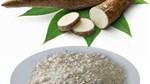 Tìm nhà nhập khẩu tinh bột sắn