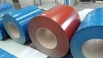 Quyết định miễn trừ biện pháp tự vệ tôn màu nhập khẩu chất lượng cao