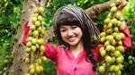 23-26/3: Diễn ra 'Tuần lễ giới thiệu Nông sản tiêu biểu Cần Thơ tại Hà Nội'