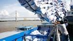 Kim ngạch xuất khẩu gạo 7 tháng đầu năm tăng trên 30%