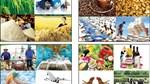 Tháng 01/2019, xuất siêu nông, lâm, thủy sản ước đạt 583 triệu USD