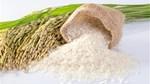 Tín đáng chú ý 14/9/2019: Giá lúa gạo tiếp tục giảm; Buôn lậu đường cát gia tăng