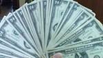Tỷ giá ngoại tệ ngày 25/5/2020: USD tăng trở lại