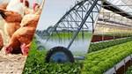 Ngành nông nghiệp được dự báo hưởng lợi lớn nhất từ Hiệp định EVFTA