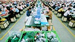 Thị trường cung cấp nguyên liệu dệt may, da, giày cho VN 5 tháng đầu năm 2020