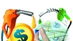 Kim ngạch nhập khẩu xăng dầu 8 tháng đầu năm 2020 giảm trên 40%