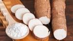 Xuất khẩu sắn và các sản phẩm sắn tháng 1/2021 tăng hơn gấp đôi so với cùng kỳ