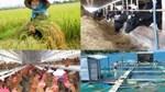 Xuất khẩu nông lâm thủy sản 2 tháng đầu năm đạt trên 6,1 tỷ USD