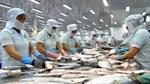 Xuất khẩu cá tra tăng bật trở lại trong tháng 3