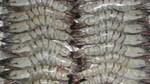 Xuất khẩu tôm chân trắng sang Nhật Bản tăng 5,8%