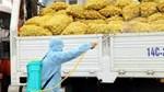 Công văn 5187/VPCP-CN tạo thuận lợi cho vận chuyển hàng trong tình hình dịch COVID-19