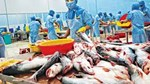Xuất khẩu thủy sản 9 tháng đầu năm 2021 đạt gần 6,19 tỷ USD