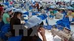Hơn 5.000 dòng thuế về 0% khi FTA Việt Nam-EAEU có hiệu lực