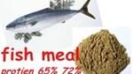 Thị trường bột cá ảm đạm vì sản lượng cao, dịch ASF và hàng tồn kho lớn