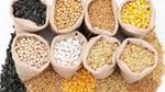 Nhập khẩu thức ăn chăn nuôi và nguyên liệu Việt Nam năm 2019 giảm 5,1%