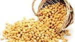 Thị trường TĂCN thế giới ngày 4/8/2020: Giá đậu tương giảm